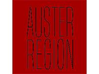 austerregion-bremen-la-rebelion